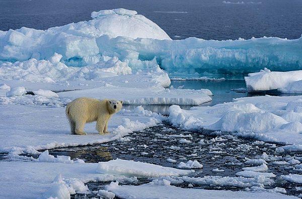 svalbard-scialpinismo-barca-14