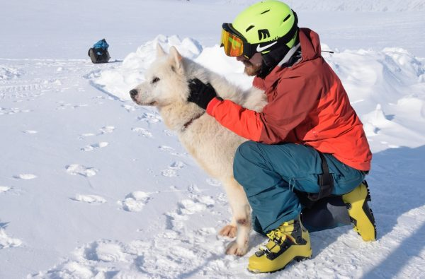 scialpinismo-svalbard-husky-11